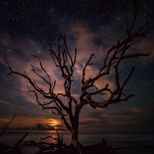 Om kjærlighet og astrologiens «hvordan passer vi sammen»?